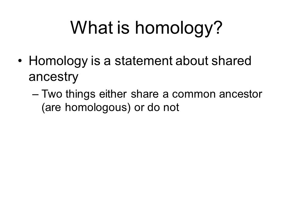 What is homology Homology is a statement about shared ancestry