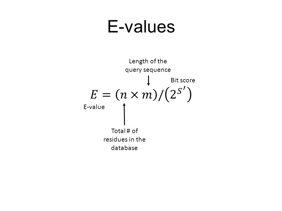 E-values 𝐸= 𝑛×𝑚 / 2 𝑆 ′ Length of the query sequence Bit score E-value