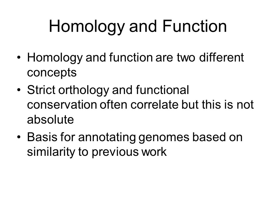 Homology and Function Homology and function are two different concepts