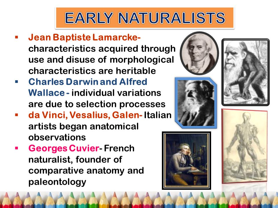 Acquired Characteristics Vs Natural Selection