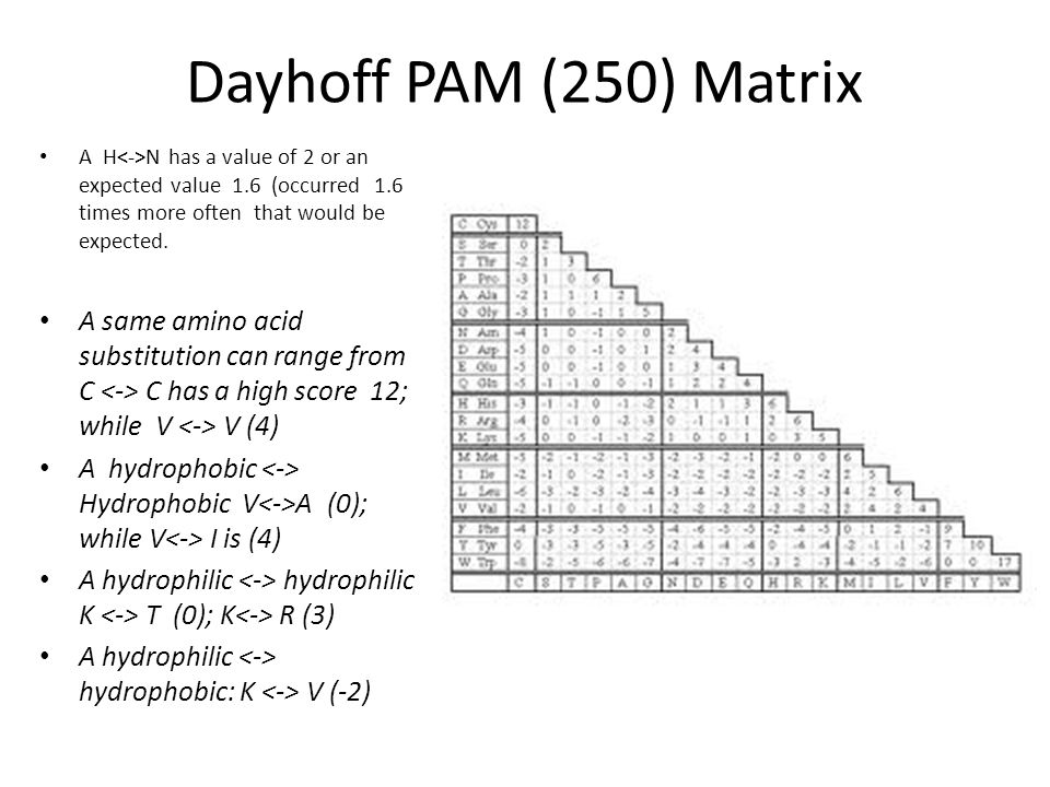 Dayhoff PAM (250) Matrix A H<->N has a value of 2 or an expected value 1.6 (occurred 1.6 times more often that would be expected.