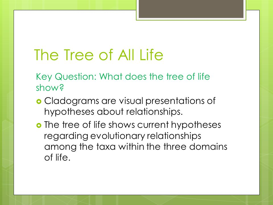 The Tree of All Life Key Question: What does the tree of life show