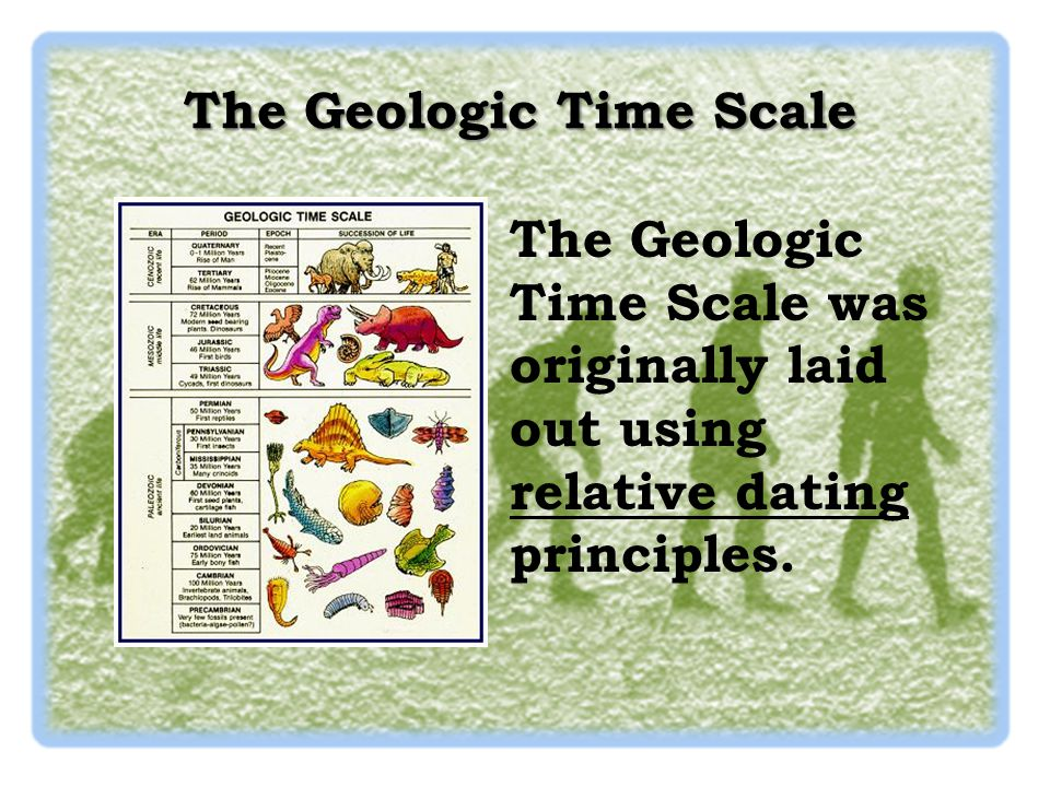 fossil actually is using radioactive dating Geologists and other scientists use fossils if a fossil species can be assigned an absolute date by radioactive dating, then that same fossil may actually.