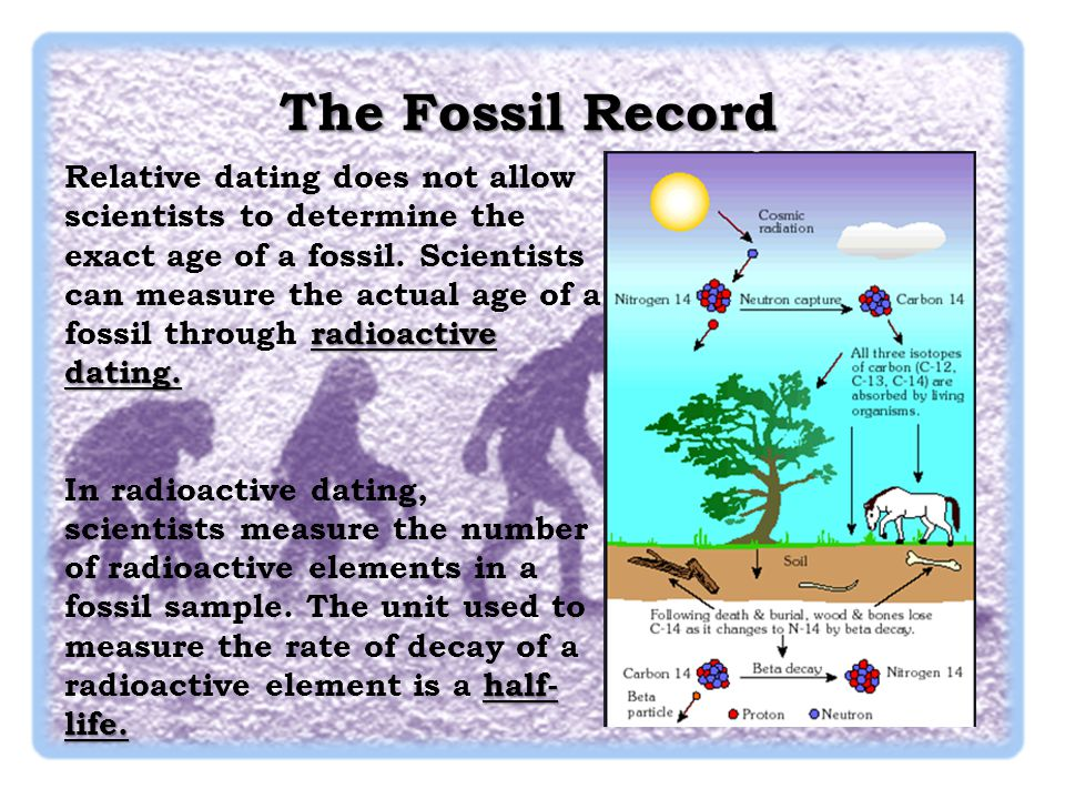 Knowing fossils and their age