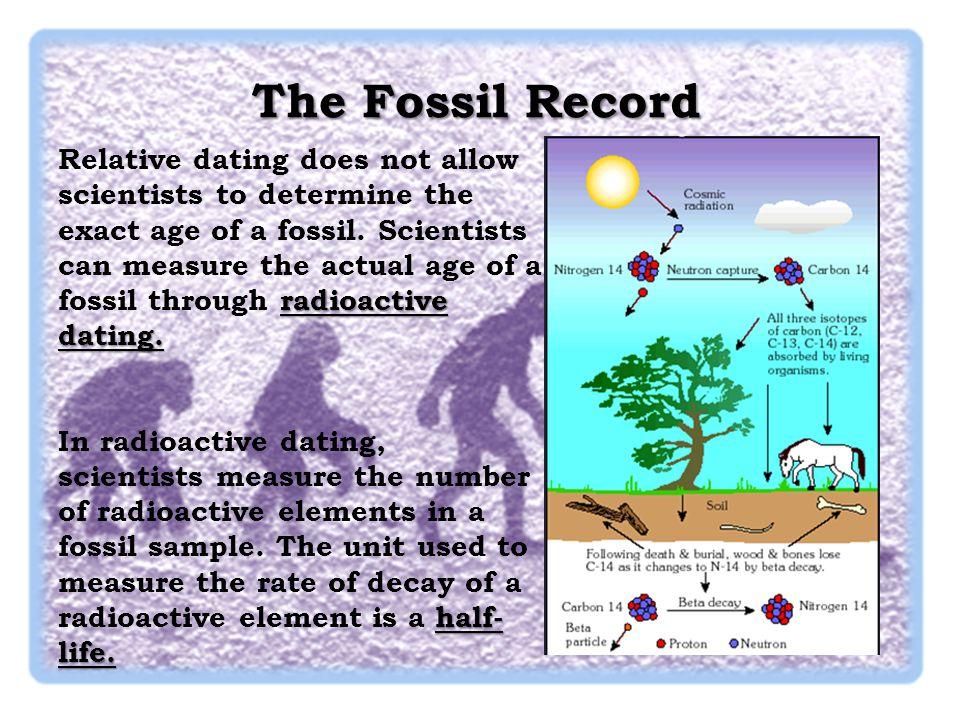 Evolution: Library: Radiometric Dating - PBS