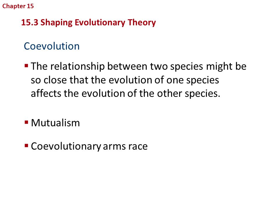 the relations between evolution and religion in charles darwins theory of evolution Here are five questions evolutionists can't answer about the theory of evolution.