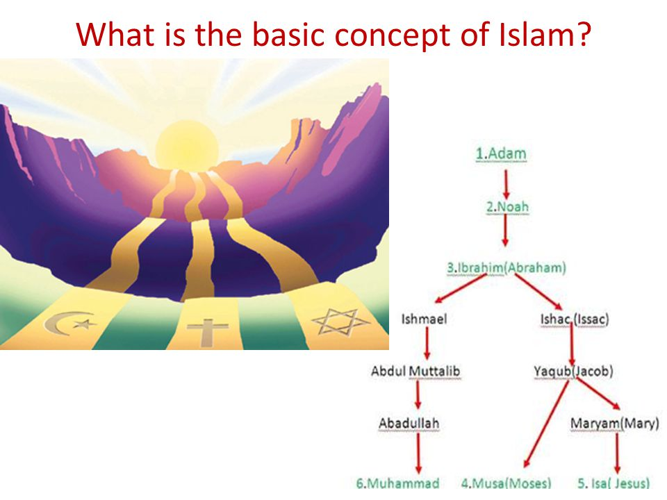 What is the basic concept of Islam