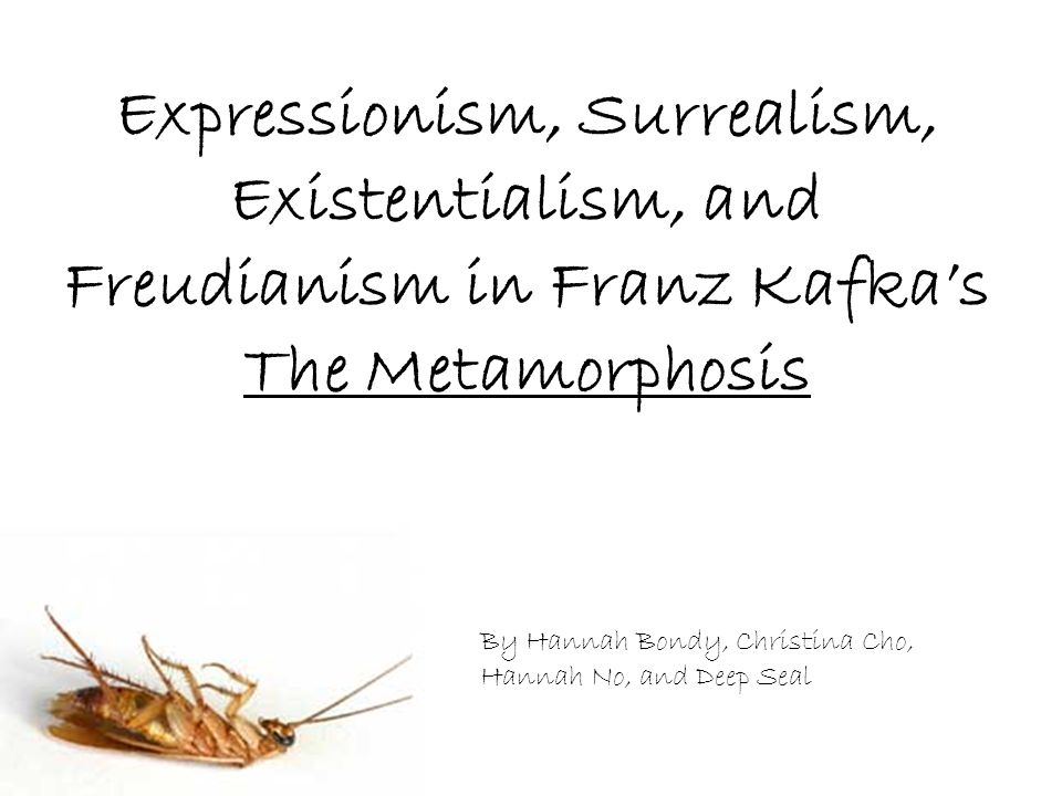 what is the theme of metamorphosis