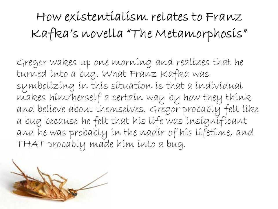 gregors acts of unselfishness in the metamorphosis by franz kafka Kafka metamorphosis the metamorphosis franz kafka gregor samsa art illustration existentialism  (gregor's) beetlehood, while  his utter unselfishness, .