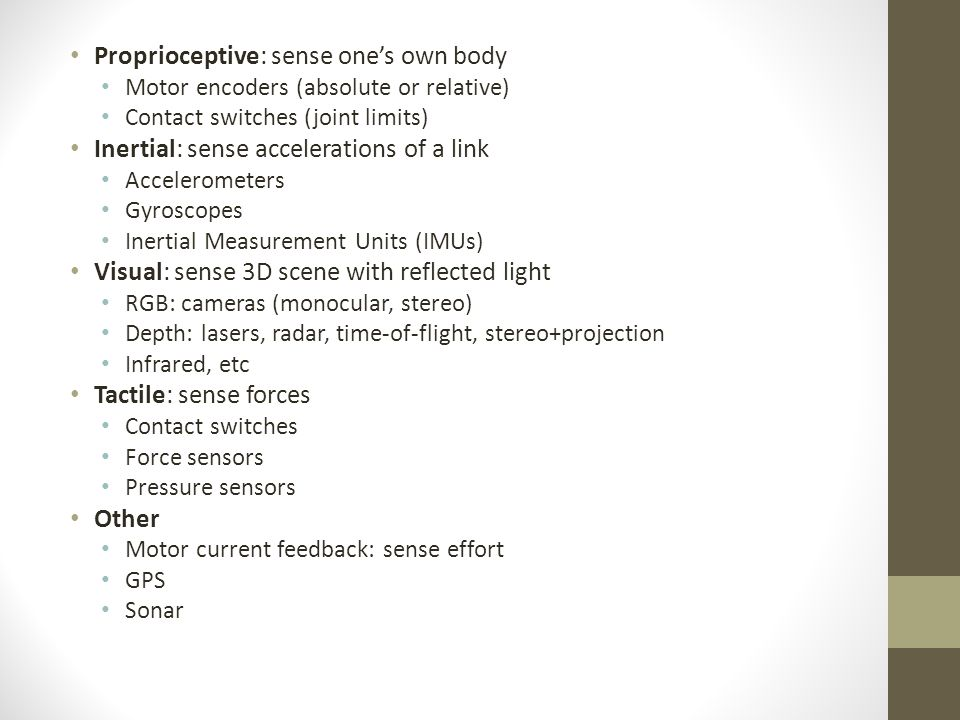 Principle of Haptic Perception Essay