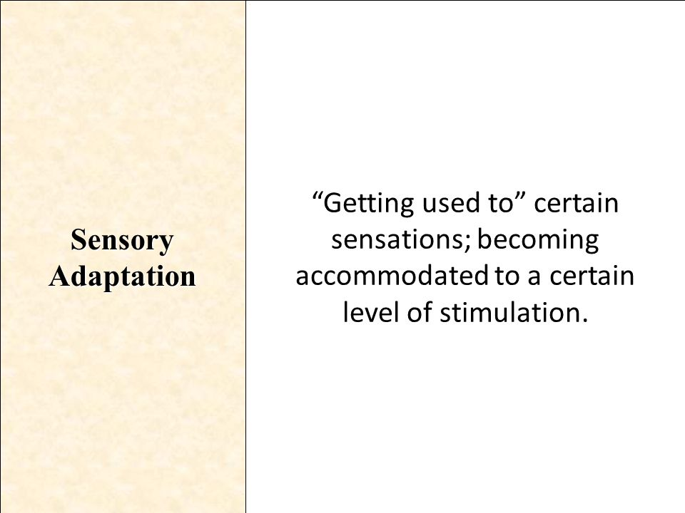 Sensory Adaptation Getting used to certain sensations; becoming accommodated to a certain level of stimulation.