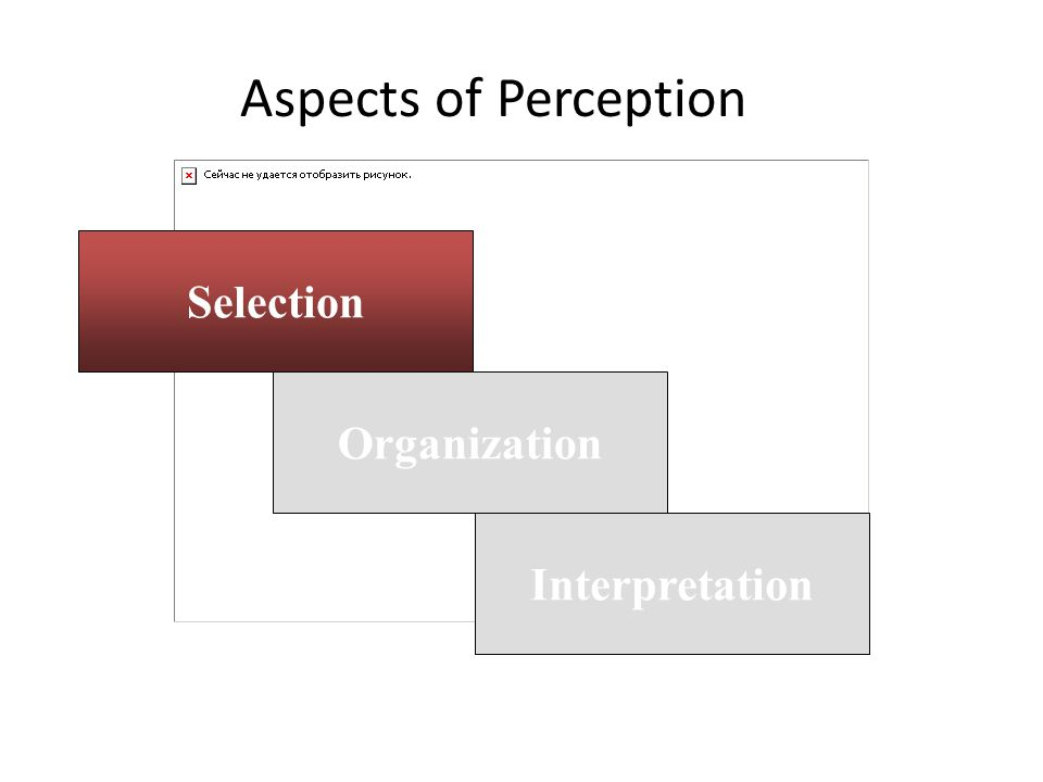 Aspects of Perception Selection Organization Interpretation