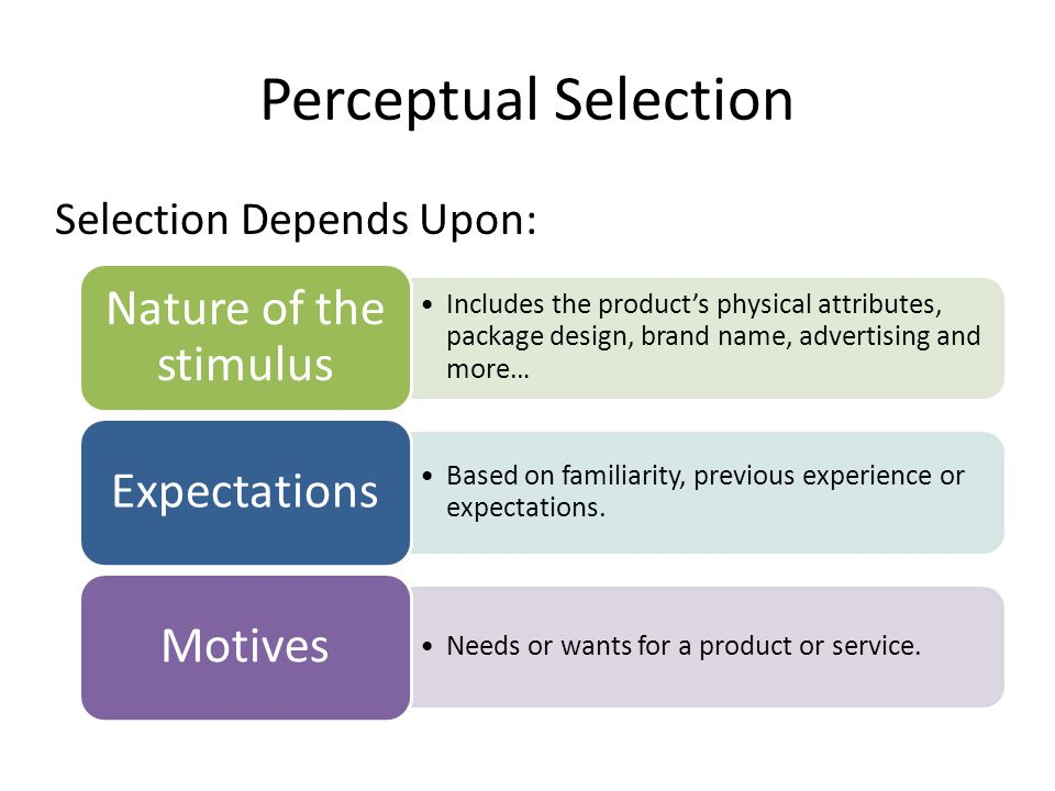 Perceptual Selection Selection Depends Upon: