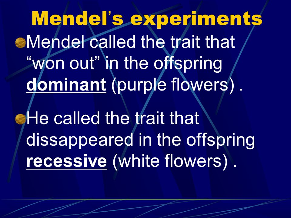 Mendel's experiments Mendel called the trait that won out in the offspring dominant (purple flowers) .