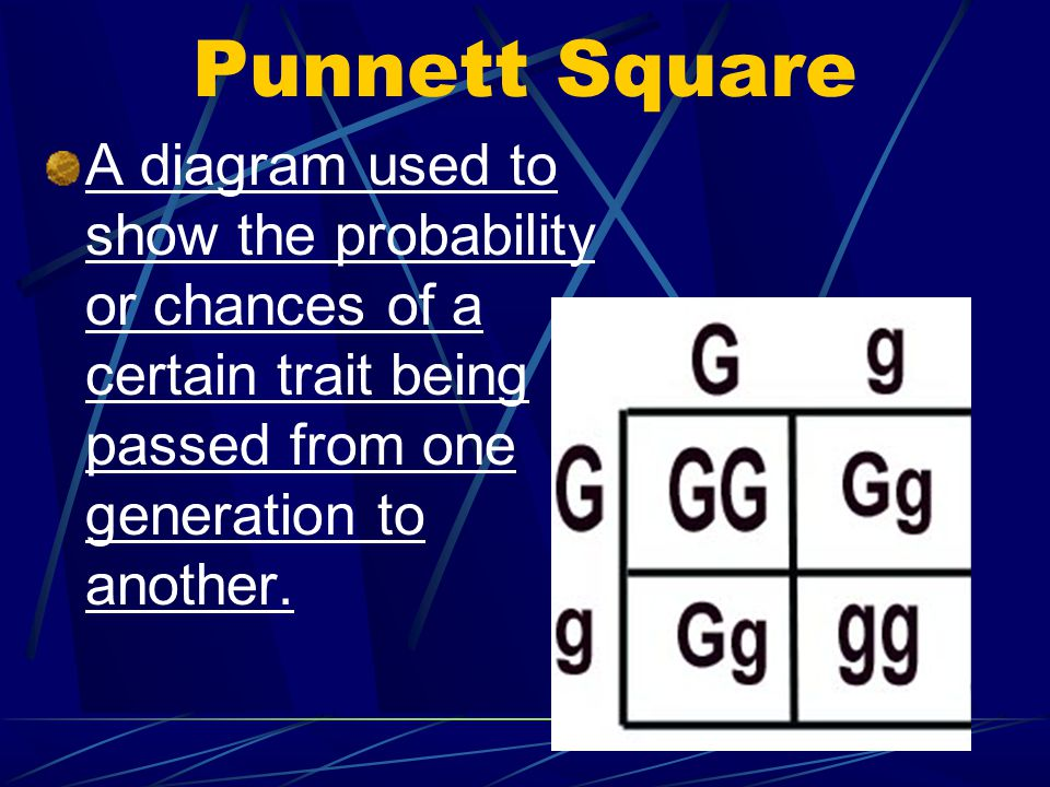 Punnett Square A diagram used to show the probability or chances of a certain trait being passed from one generation to another.