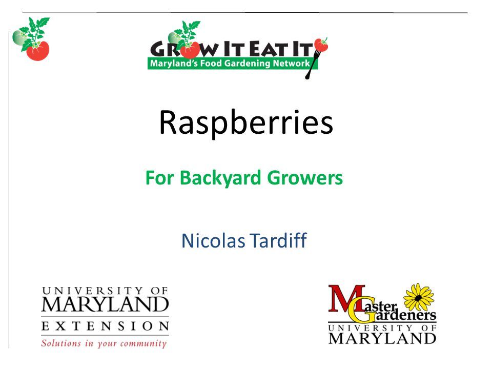 For Backyard Growers Nicolas Tardiff Ppt Video Online Download