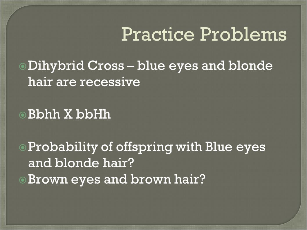 Practice Problems Dihybrid Cross – blue eyes and blonde hair are recessive. Bbhh X bbHh. Probability of offspring with Blue eyes and blonde hair