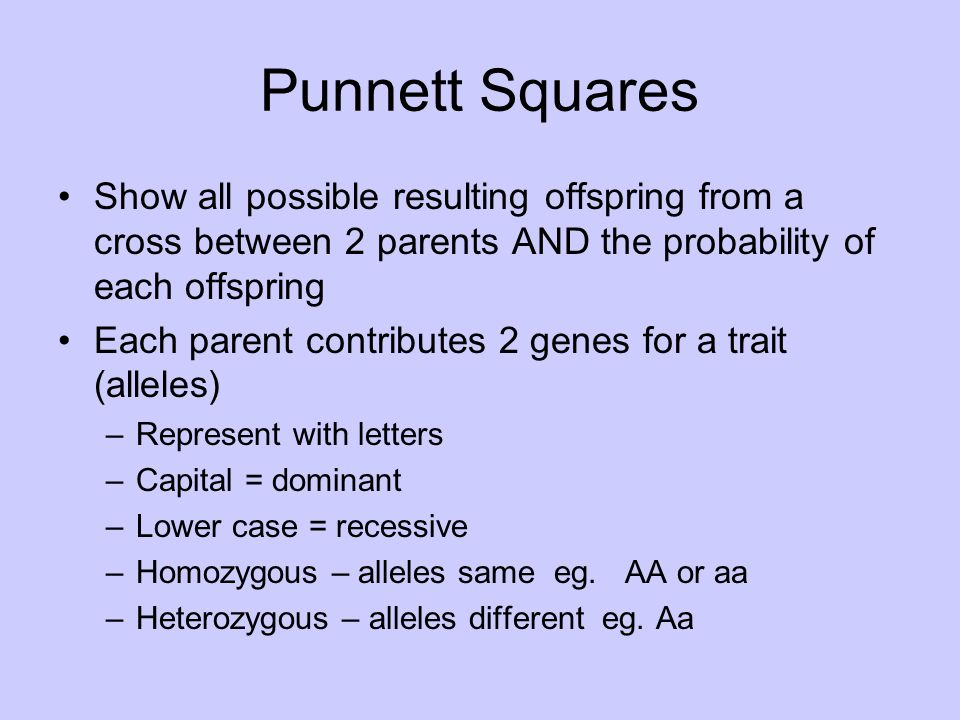 Punnett Squares Show all possible resulting offspring from a cross between 2 parents AND the probability of each offspring.