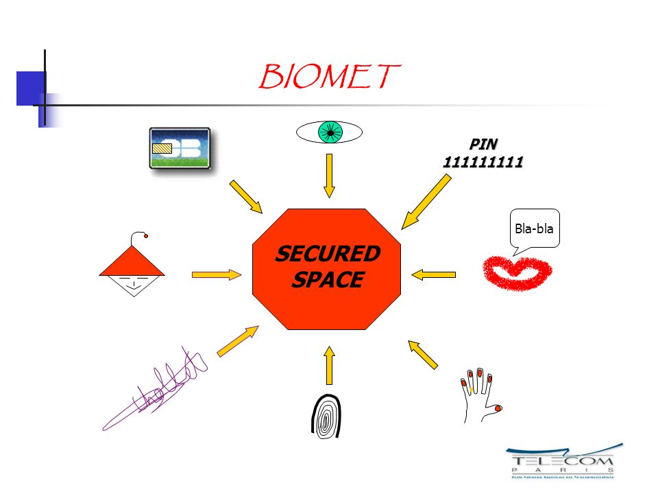BIOMET Bla-bla SECURED SPACE PIN