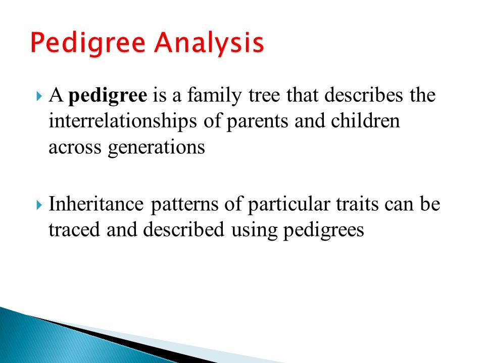 """patterns of inheritance from parents to children Patterns of inheritance the phenotype of an individual is determined by his or her genotype the genotype is determined by alleles that are received from the individual's parents (one from mom and one from dad) these alleles control if a trait is """"dominant"""" or """"recessive"""" additionally, the location of the alleles in the."""