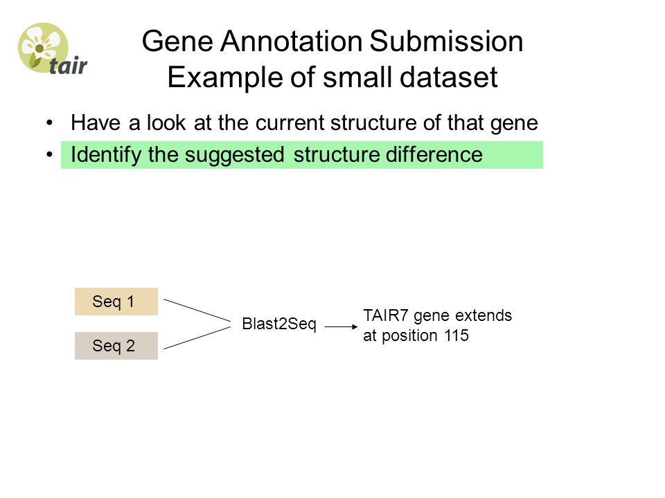 Gene Annotation Submission Example of small dataset