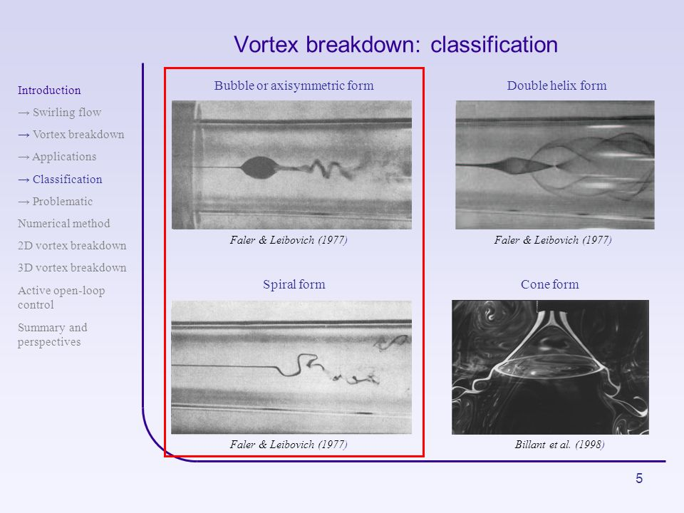Vortex breakdown: classification