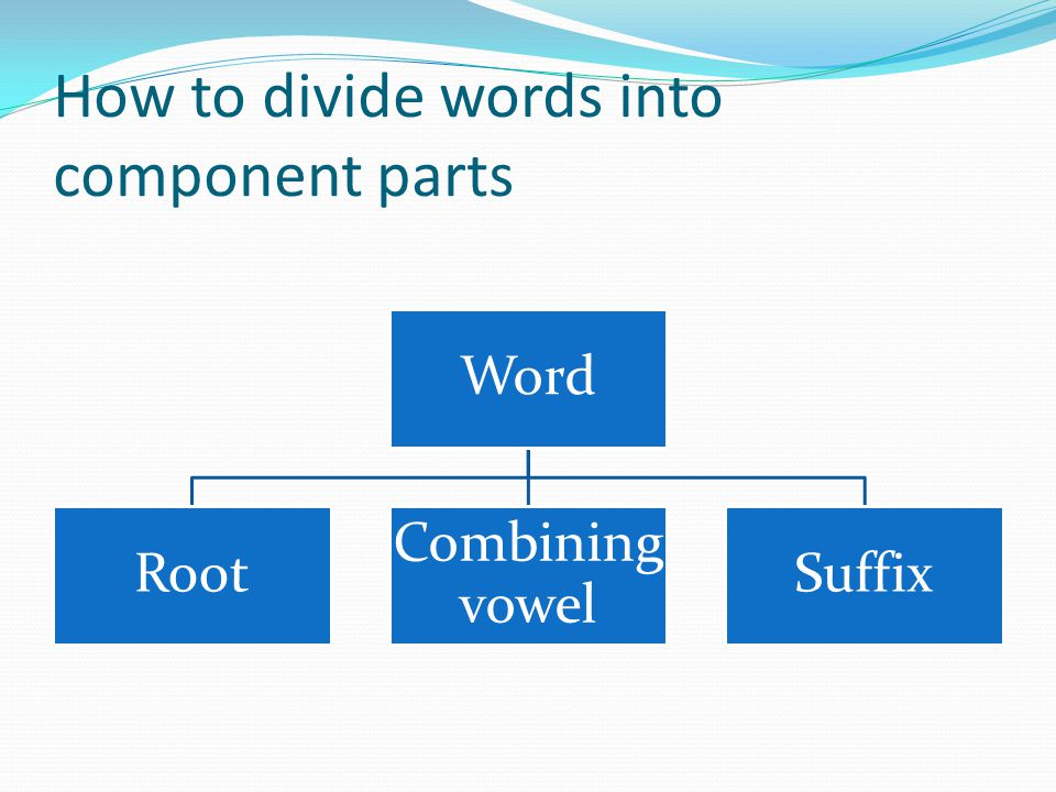 How to divide words into component parts