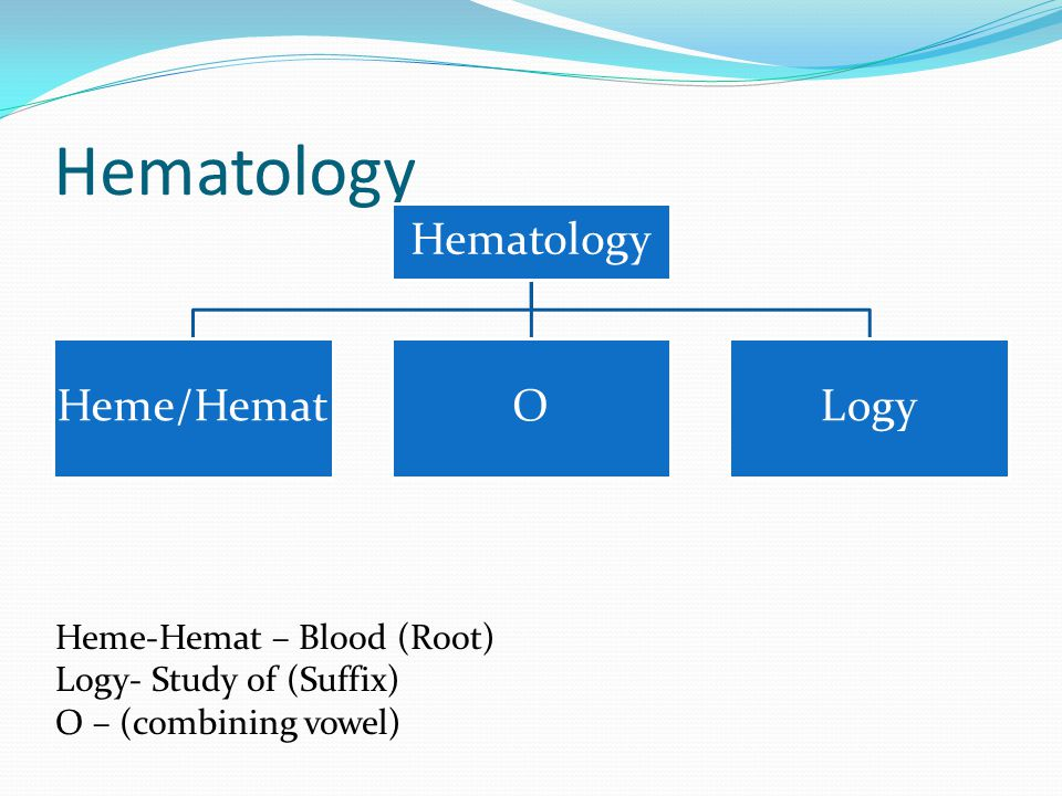 Hematology Hematology Heme/Hemat O Logy Heme-Hemat – Blood (Root)