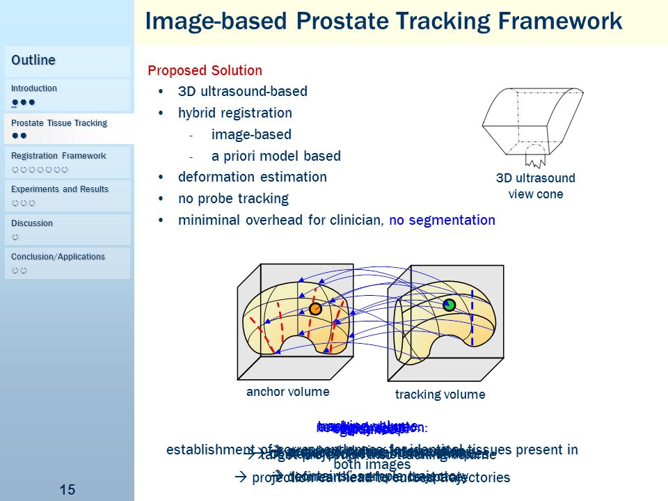 Image-based Prostate Tracking Framework