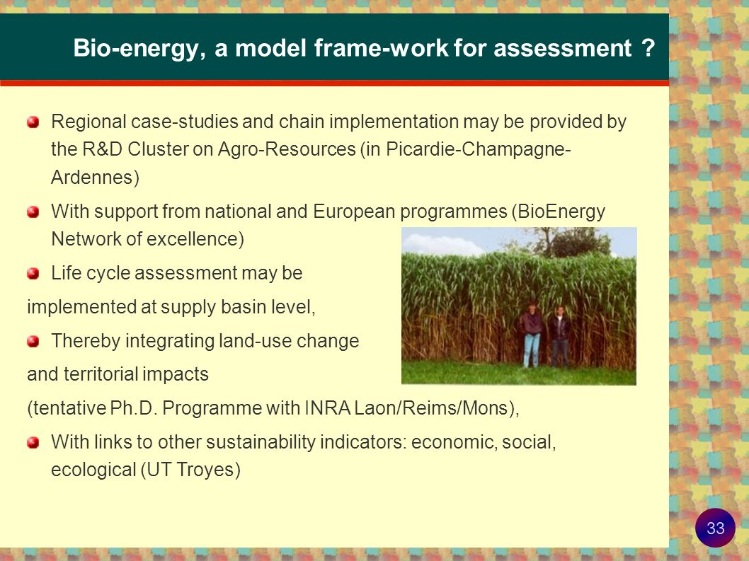 Bio-energy, a model frame-work for assessment
