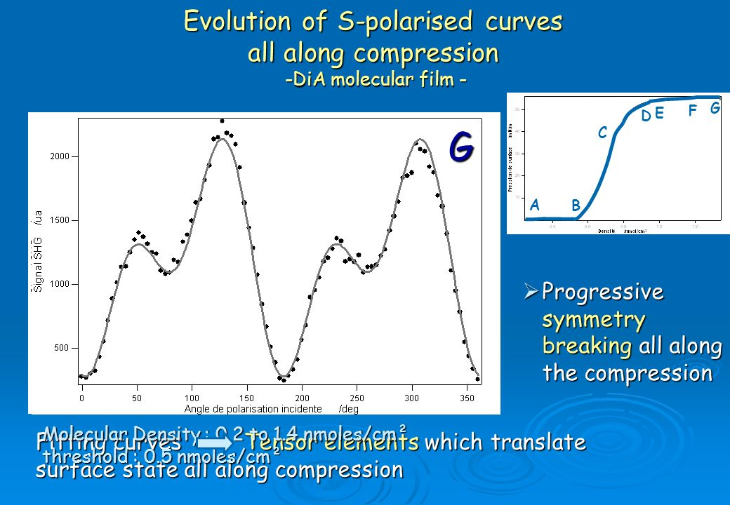 Evolution of S-polarised curves all along compression -DiA molecular film -