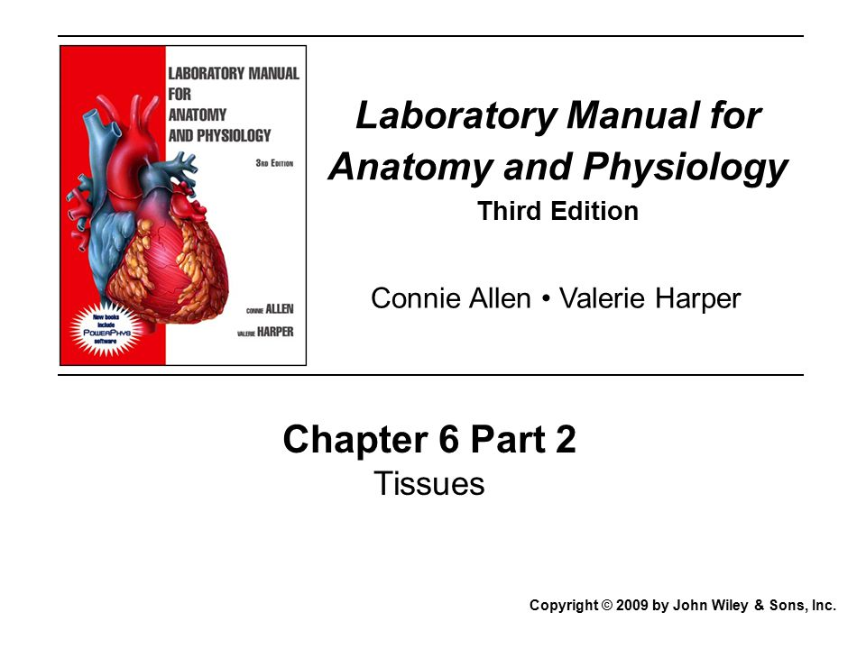 Laboratory Manual for Anatomy and Physiology - ppt video online download