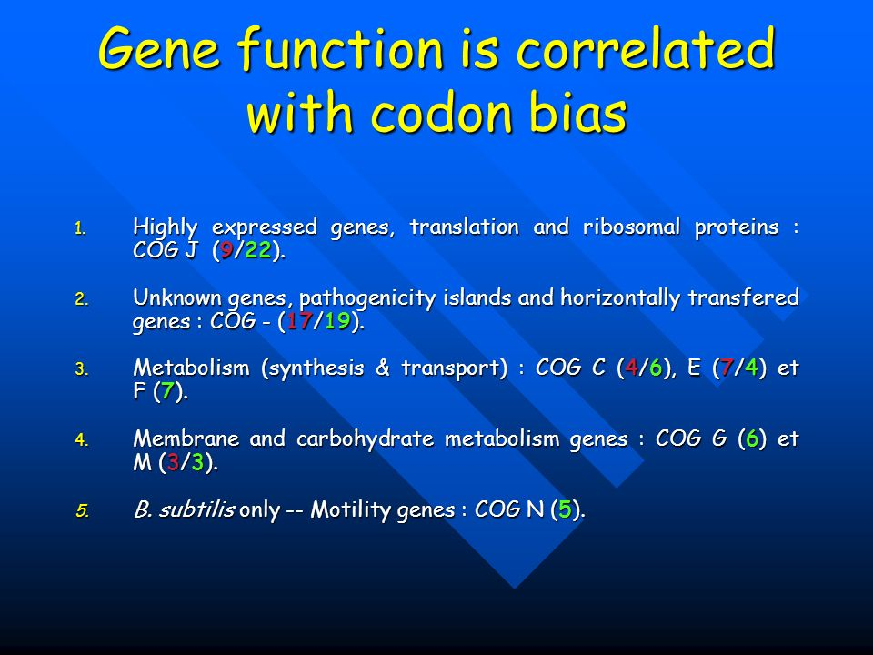 Gene function is correlated with codon bias