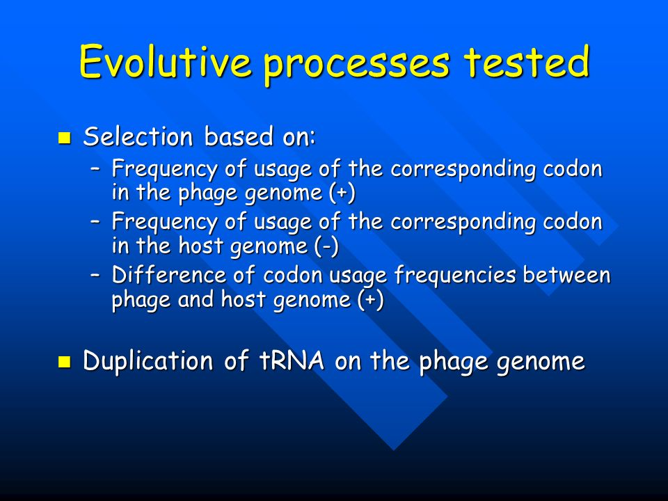 Evolutive processes tested