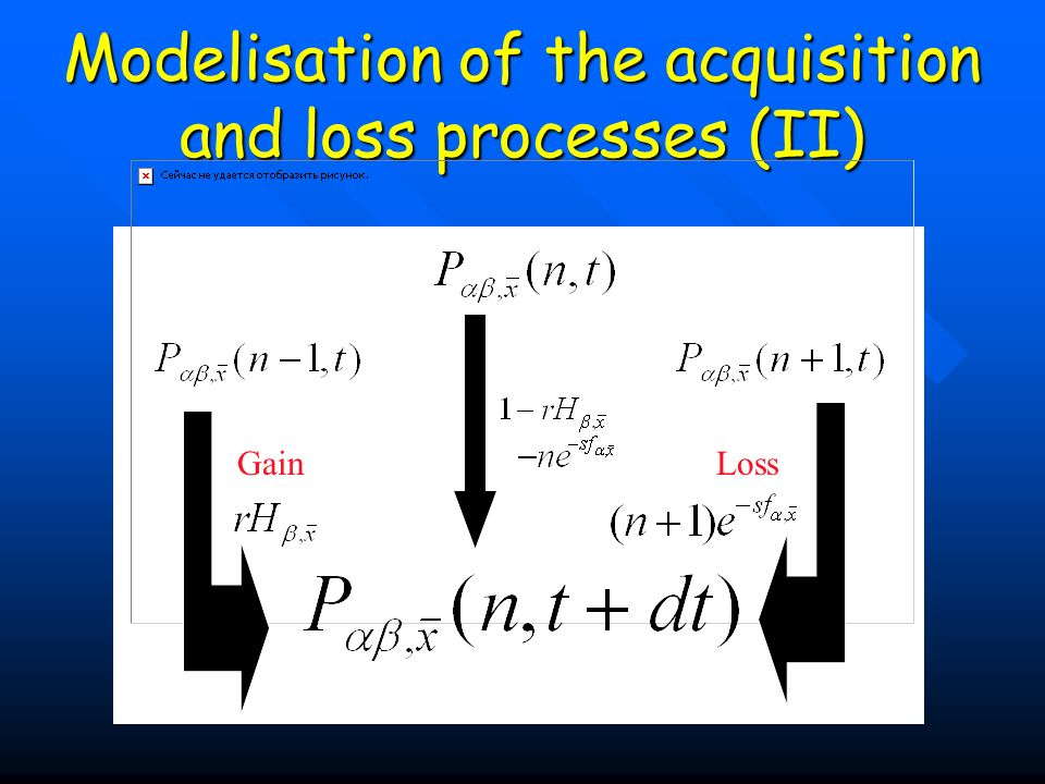 Modelisation of the acquisition and loss processes (II)