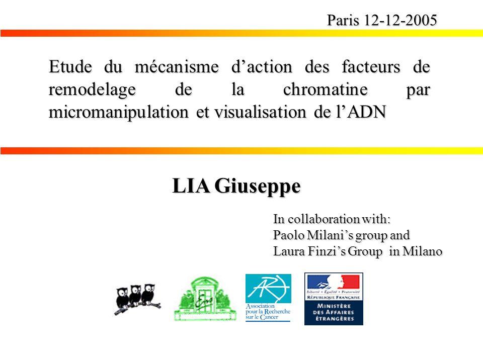 Paris 12-12-2005 Etude du mécanisme d'action des facteurs de remodelage de la chromatine par micromanipulation et visualisation de l'ADN.