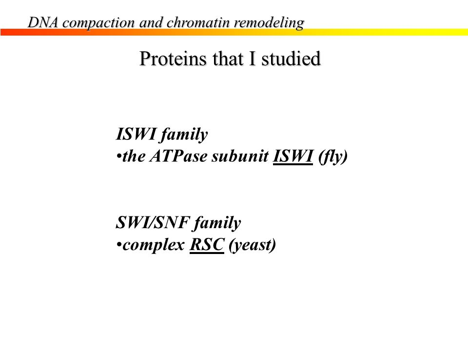Proteins that I studied