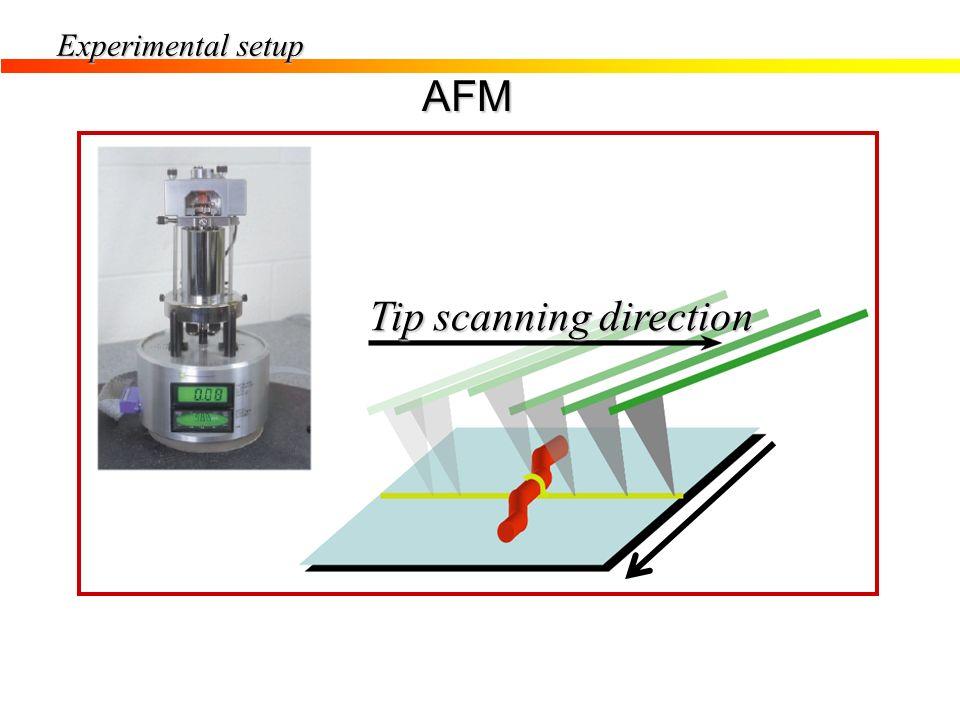 Tip scanning direction