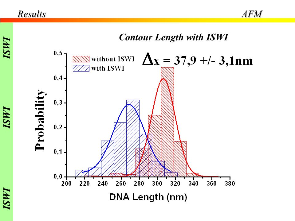 Results AFM ISWI Contour Length with ISWI
