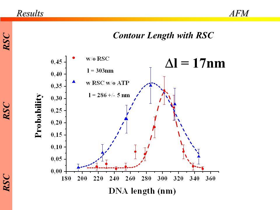 Results AFM RSC Contour Length with RSC Dl = 17nm