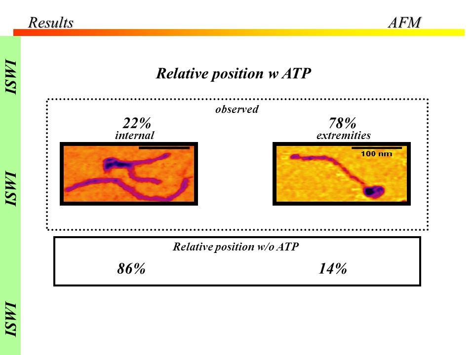 Relative position w ATP