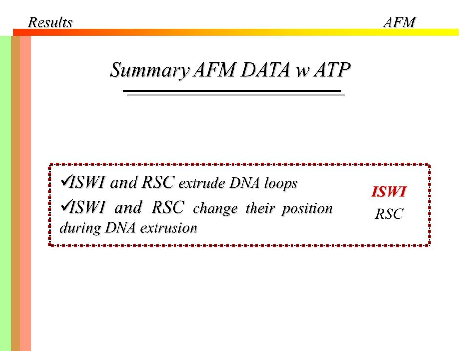 Summary AFM DATA w ATP ISWI and RSC extrude DNA loops