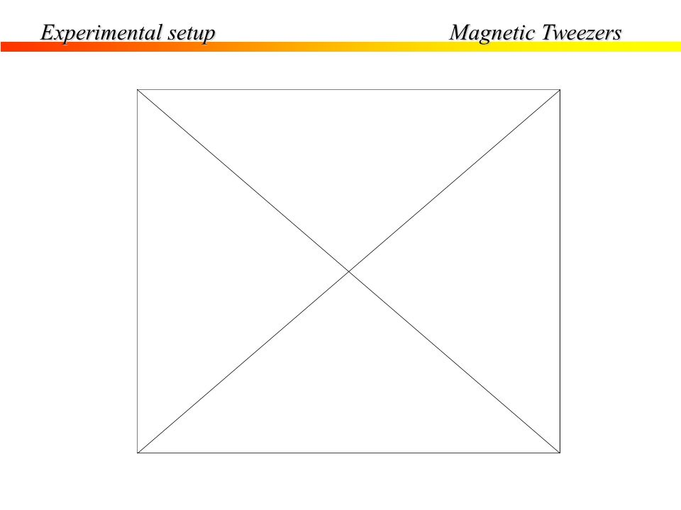 Experimental setup Magnetic Tweezers