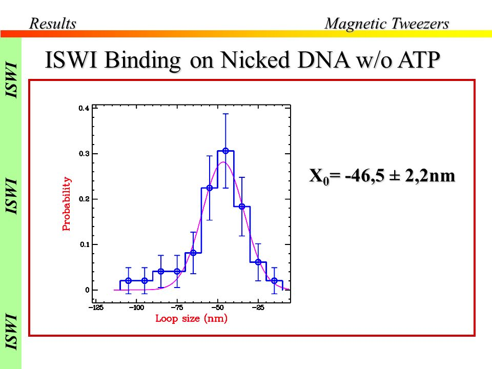 ISWI Binding on Nicked DNA w/o ATP