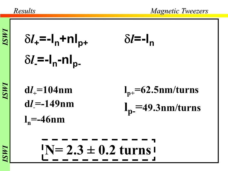dl+ dl- N= 2.3 ± 0.2 turns dl+=-ln+nlp+ dl-=-ln-nlp- dl=-ln