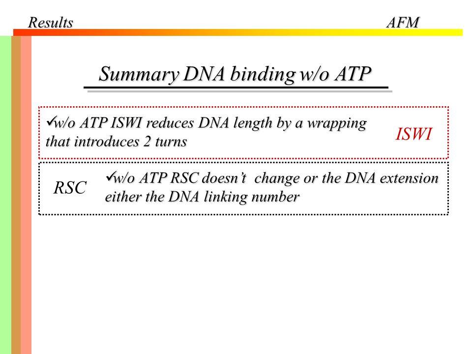Summary DNA binding w/o ATP
