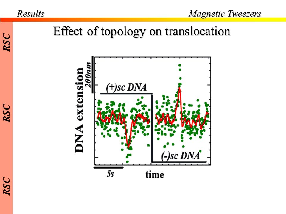 Effect of topology on translocation