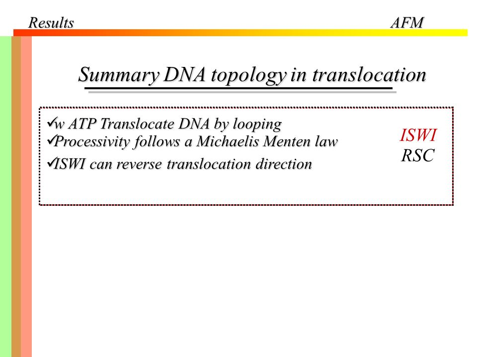 Summary DNA topology in translocation