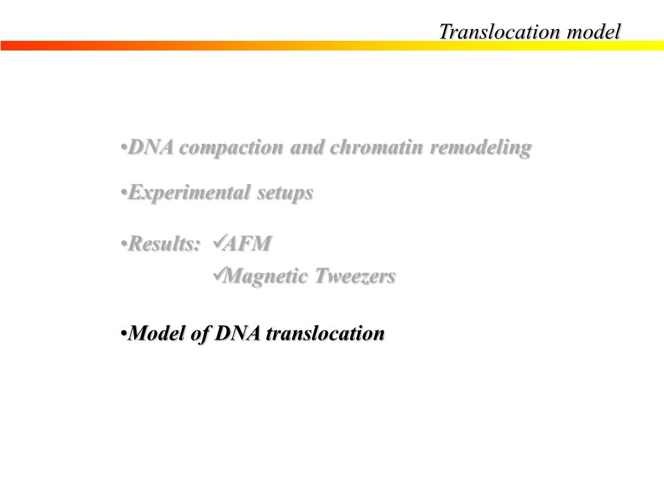 Translocation model DNA compaction and chromatin remodeling. Experimental setups. Results: AFM. Magnetic Tweezers.