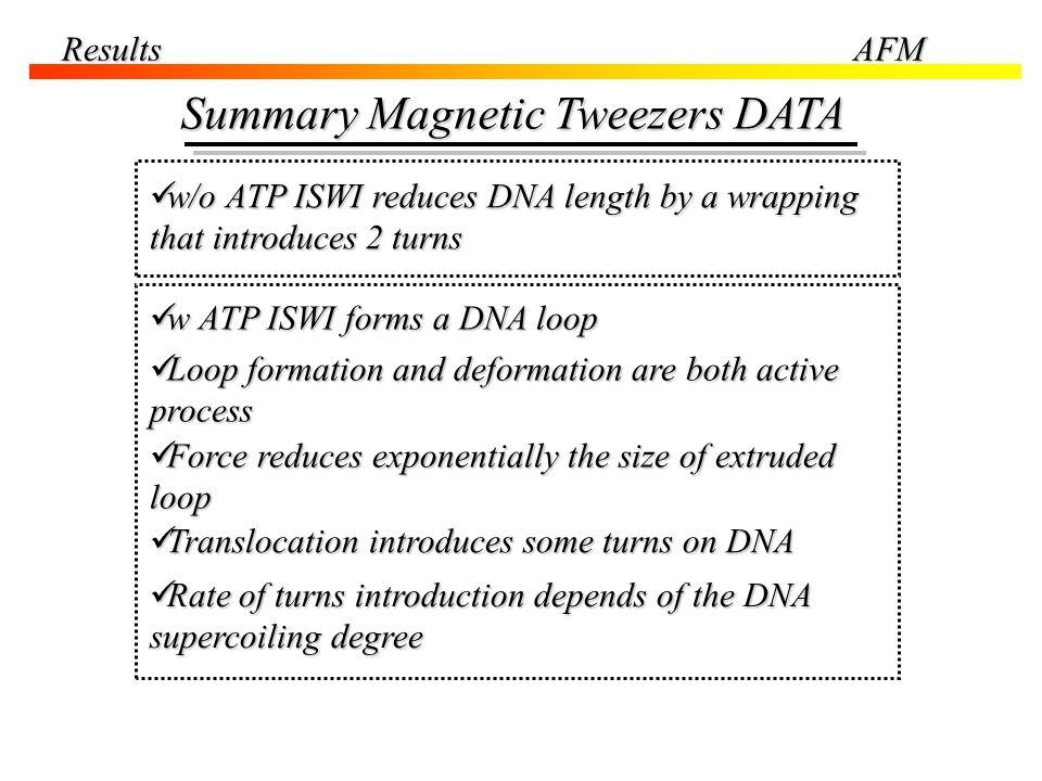 Summary Magnetic Tweezers DATA